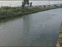 河道水处理项目